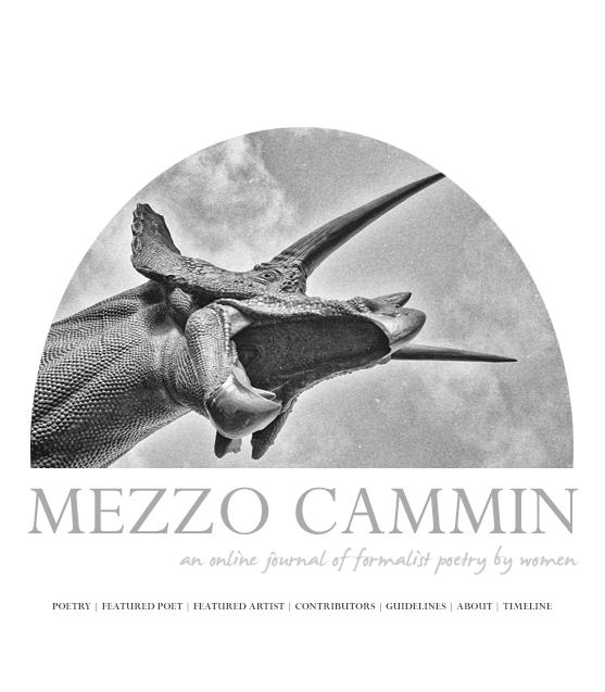 Mezzo Cammin cover